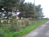 Cattery Fence - Before