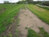 Doncaster re-seeding - Before