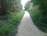 Oakenshaw Nature Reserve - Path Before