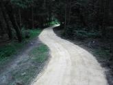 Oakenshaw Nature Reserve - Woodland Footpath
