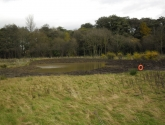 Potto Pond - After Reshaping