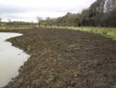 Potto Pond - After Reshaping Edges